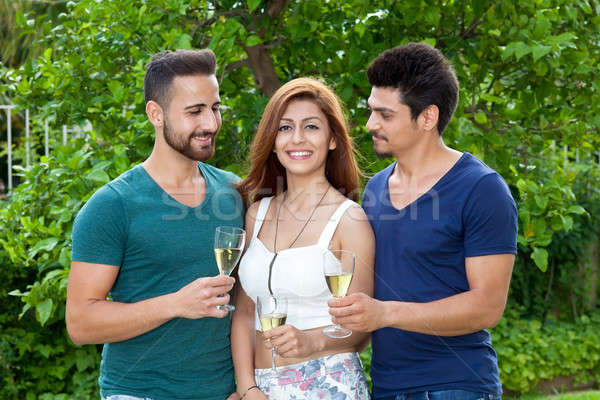 Two young men and a woman, at a garden party Stock photo © belahoche