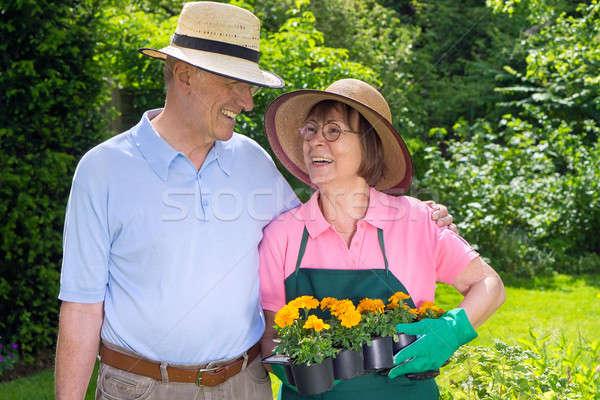 Feliz pareja de ancianos jardín flores pie mirando Foto stock © belahoche