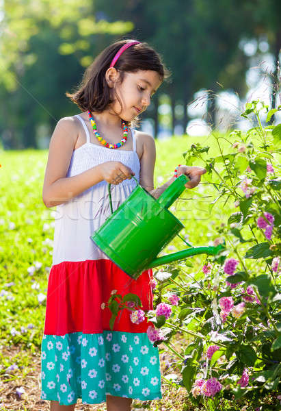 Young Girl in Sundress Watering Plants Stock photo © belahoche
