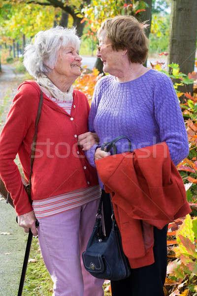Kettő idős nők mosolyog egyéb három Stock fotó © belahoche
