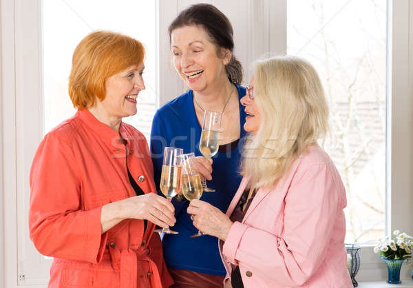 Very Closed Mom Friends Holding Glasses of Wines Stock photo © belahoche