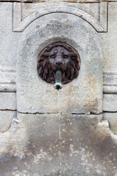 Water fountain, lion head made of bronze Stock photo © belahoche
