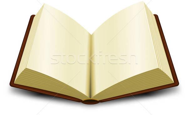 Open Book Stock photo © benchart