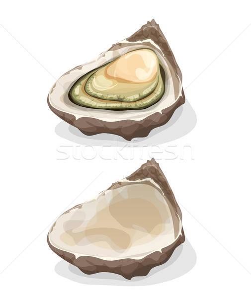Oyster Shell Stock photo © benchart