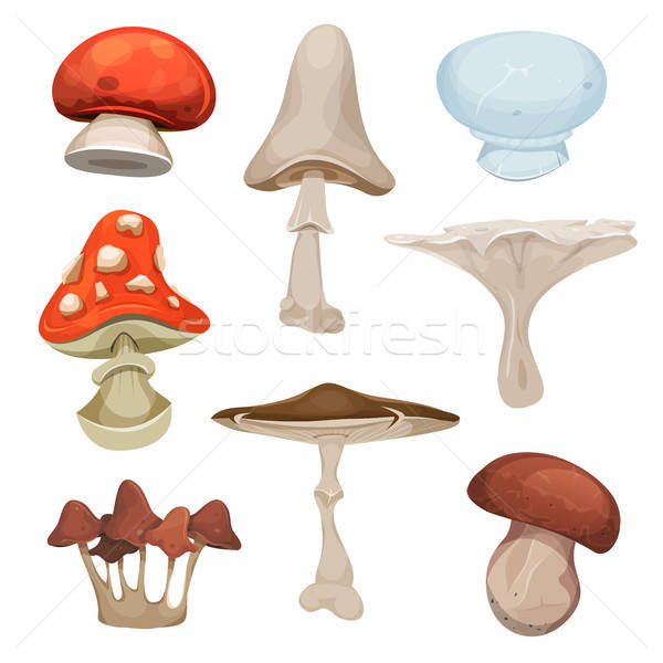 Mushrooms Set Stock photo © benchart