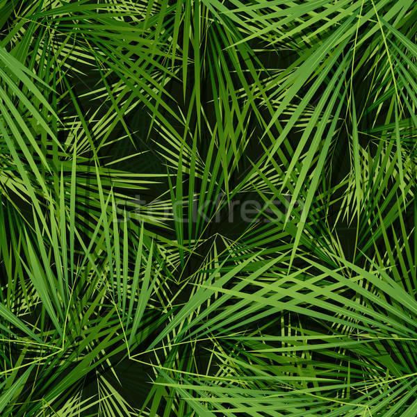 Palmiers laisse wallpaper illustration tropicales Photo stock © benchart