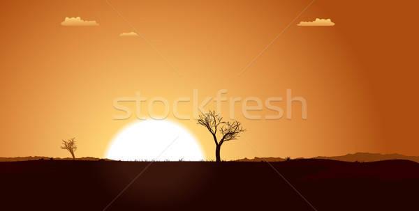 Summer Desert Plain Landscape Stock photo © benchart