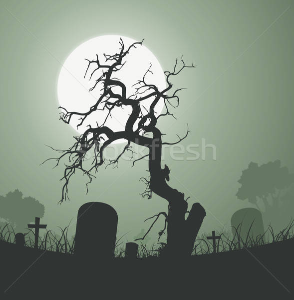 Halloween Spooky Dead Tree In Graveyard Stock photo © benchart