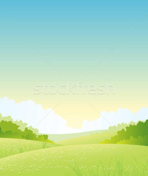 Verão primavera natureza paisagem ilustração ao ar livre Foto stock © benchart
