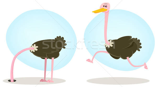 Ostrich Running And Hiding Head Stock photo © benchart