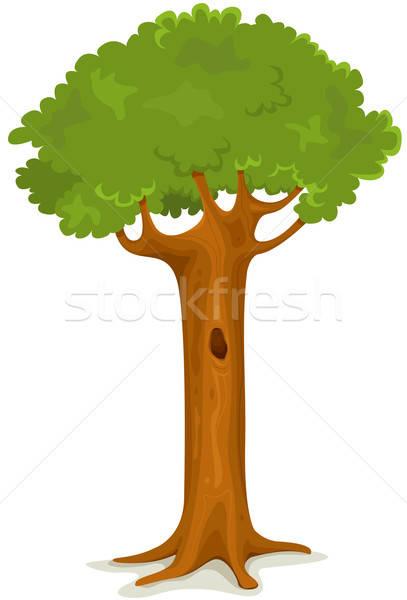 Nyár tavasz fa illusztráció rajz évszak Stock fotó © benchart