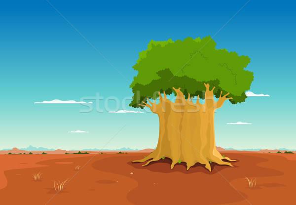 Baobab Inside African Desert Stock photo © benchart