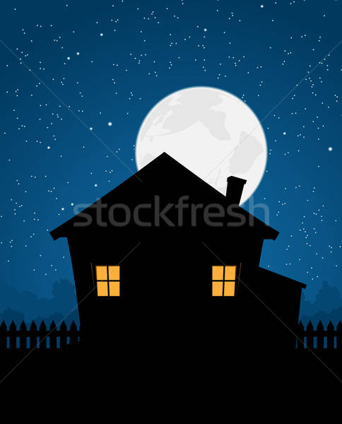 House Silhouette In Starry Night Stock photo © benchart