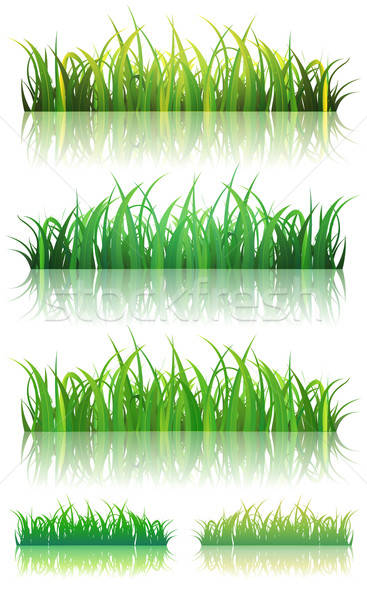 Spring Or Summer Green Grass Set Stock photo © benchart