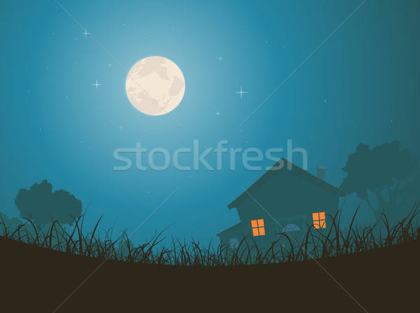 House In Moonlight Landscape Stock photo © benchart
