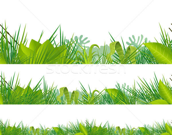 Seamless Jungle And Tropical Vegetation Stock photo © benchart