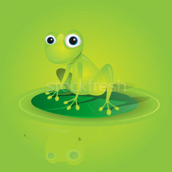 Stockfoto: Groene · kikker · illustratie · permanente · vector · ogen