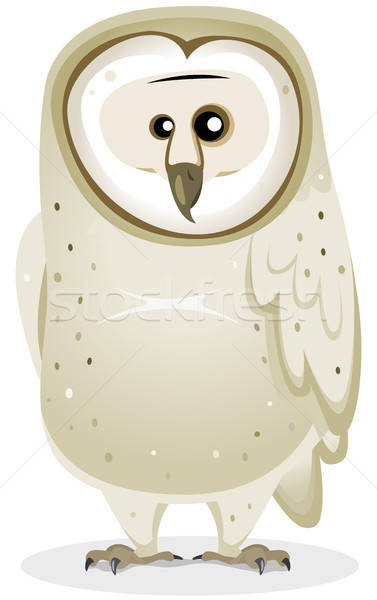 Cartoon Barn Owl Character Stock photo © benchart