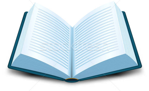 Book Icon Stock photo © benchart