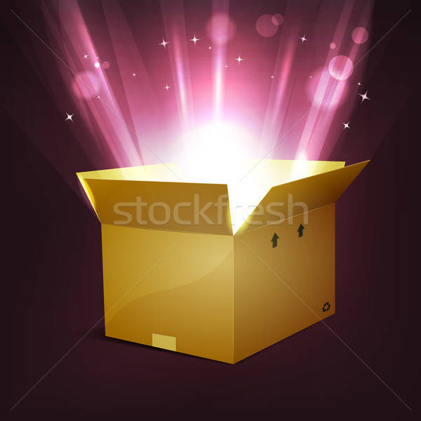Holidays Shining Magic Present  Stock photo © benchart