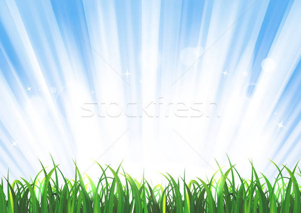 Spring Or Summer Sunrise Grass Landscape Stock photo © benchart
