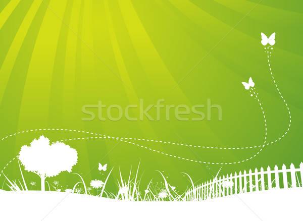 Spring And Summer Butterflies Garden Background Stock photo © benchart
