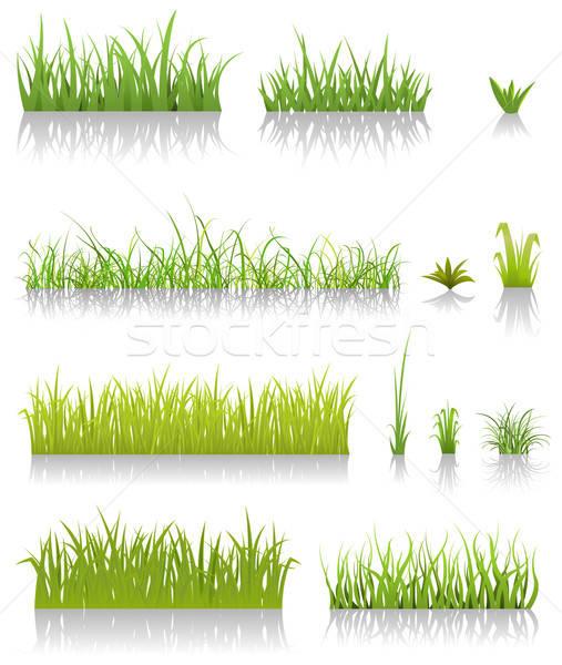 Green Grass Set Stock photo © benchart