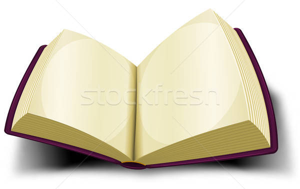 Opened Big Book Icon With Blank Pages Stock photo © benchart