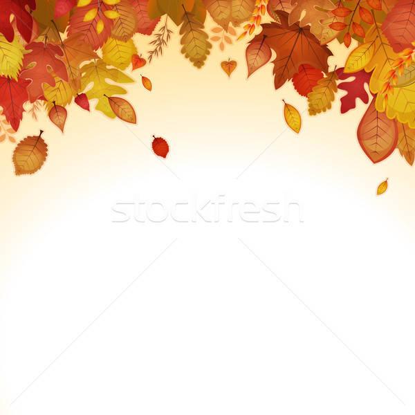 Autumn Leaves Background Stock photo © benchart