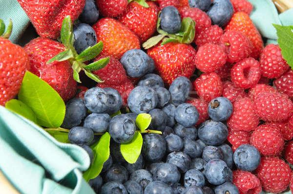Bayas estacional arándano fresa frambuesa verano Foto stock © bendicks