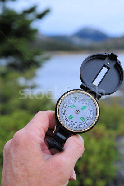 Hiking Compass Stock photo © bendicks