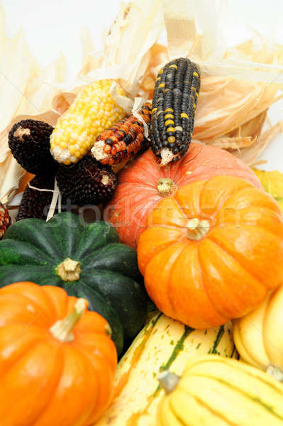 Indian Corn And Squash Stock photo © bendicks
