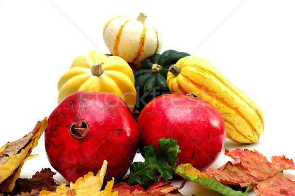 Outono produzir inverno abóbora verde amarelo Foto stock © bendicks