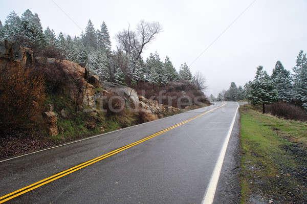 Mountain Road Stock photo © bendicks