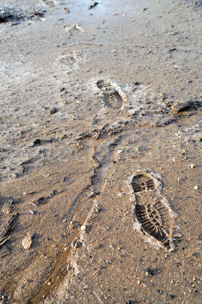 Frozen Mud And Boot Prints Stock photo © bendicks