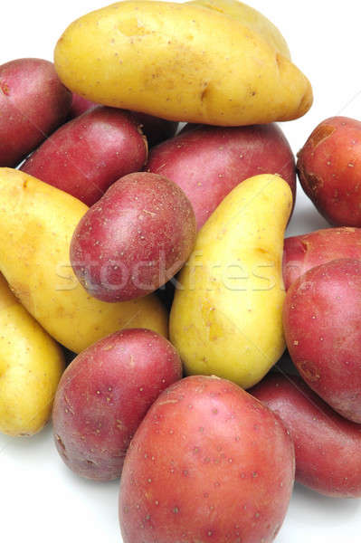 Fingerling Potatoes Stock photo © bendicks