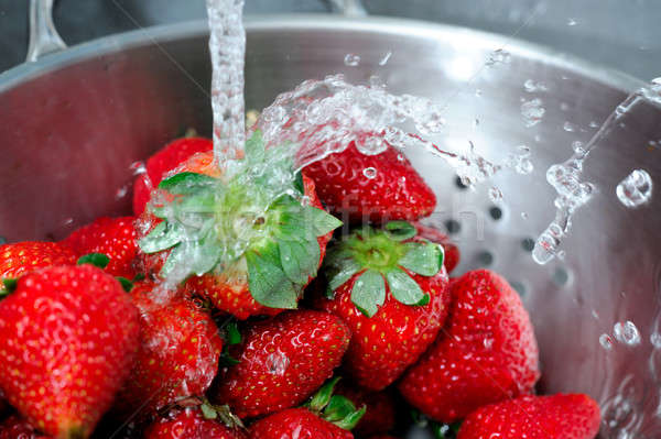 Rinsing Strawberry With Water  Stock photo © bendicks