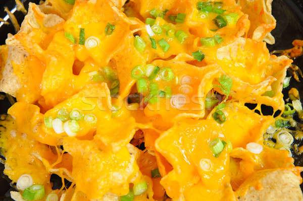 Nachos prato queijo fino Foto stock © bendicks