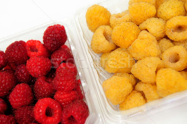 Red And Golden Raspberry Stock photo © bendicks