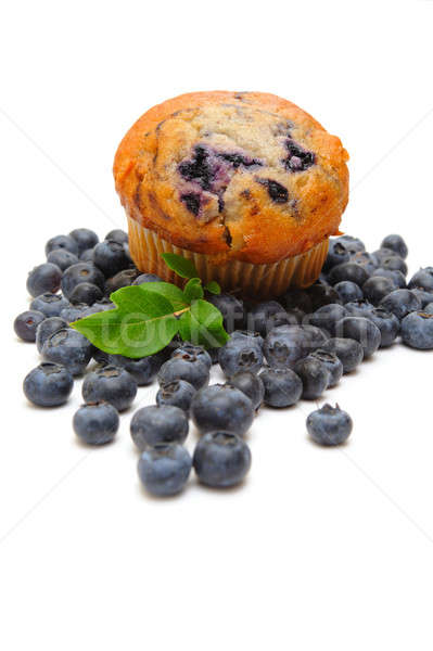 Muffin vers bosbessen licht Stockfoto © bendicks