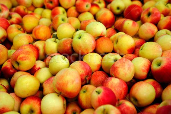 Amarillo manzana roja frescos manzanas rojo Foto stock © bendicks