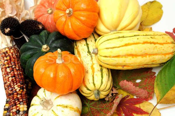 Fall Vegetables Stock photo © bendicks
