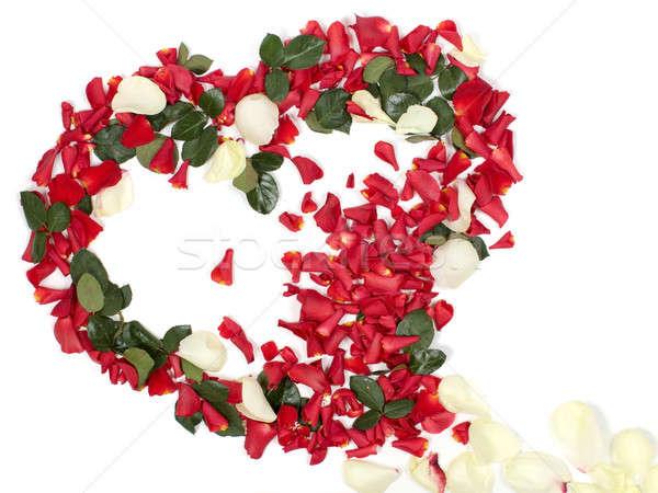 Kalp yaprakları buket kırmızı beyaz Stok fotoğraf © bendzhik