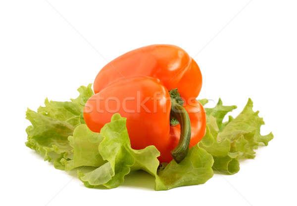 Peppers Stock photo © bendzhik