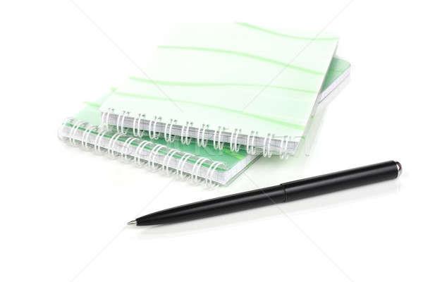 ноутбук пер белый бизнеса Дать чернила Сток-фото © bendzhik
