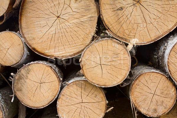 Kesmek ağaçlar ağaç inşaat Stok fotoğraf © bendzhik