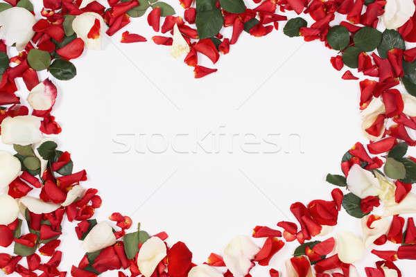 Stok fotoğraf: Kalp · yaprakları · buket · kırmızı · beyaz