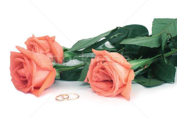 Güller alyans beyaz sevmek yaprak hediye Stok fotoğraf © bendzhik