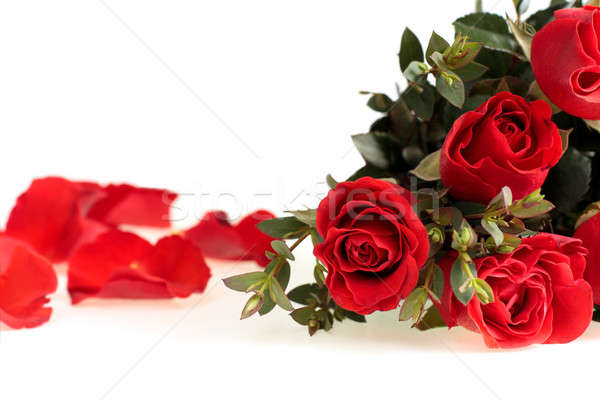 Red Roses Stock photo © bendzhik