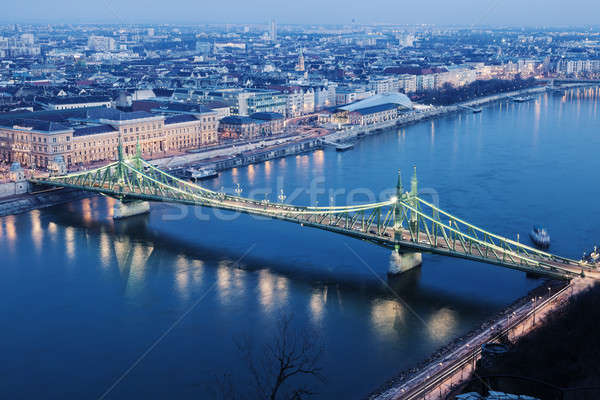 Liberty Bridgeand Danube River Stock photo © benkrut